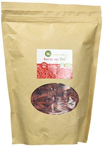 Herbes Et Plantes Baie de Goji Bio Région Tibétaine 500 g
