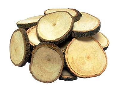 Unfnished Wood Slices