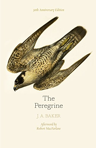 The Peregrine: 50th Anniversary Edition: Afterword by Robert Macfarlane (English Edition)