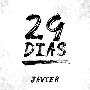 29 Dias