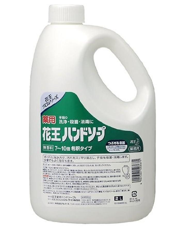 モナリザ雪サンダー薬用 花王ハンドソープ 2L×(3セット)