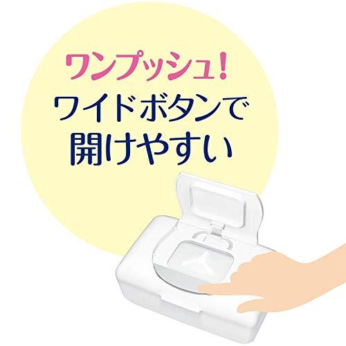 大王製紙 エリエール ピュアナ Puana 除菌99.99% ウェットティシュー 本体 42枚 [8568]