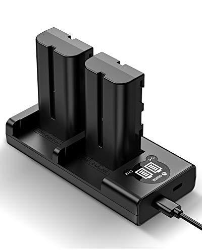 Oxsmal NP-F550 Kamera Akku als Ersatz für Sony NP F970, F750, F770, F960, F550, F530, F330, F570, CCD-SC55, TR516, TR716, TR818, TR910, TR917 usw, 2900mAh Ersatzakkus, 2 Stück mit Ladegrät