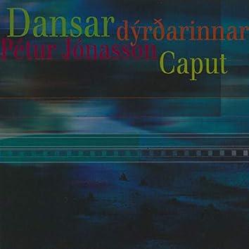 Dansar Dýrðarinnar