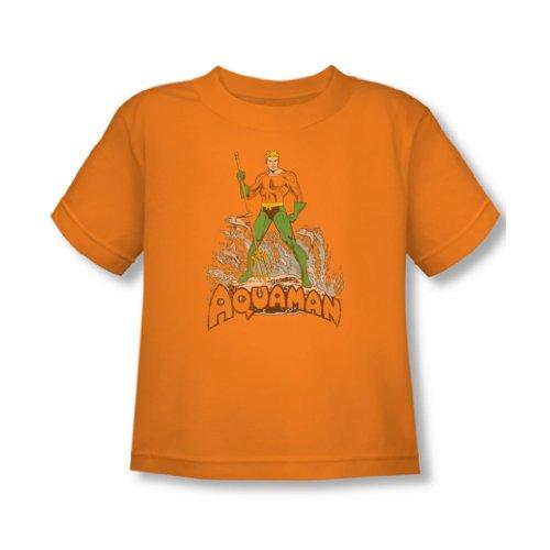 Aquaman - - Tout-petit affligé T-shirt à Orange, 4T, Orange