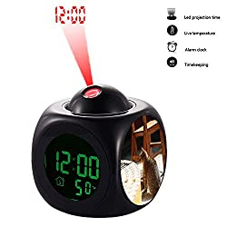 grilsight3 Projection Alarm Clock, Digital LCD Voice Talking Function, Alarm/Snooze/Temperature Display,LED Wall/Ceiling Projection 114.Brown and Gray Cat Near Wooden Chair on Daytime(Black)