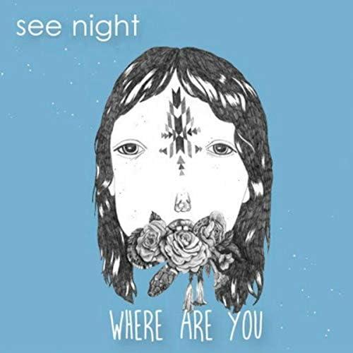 See Night