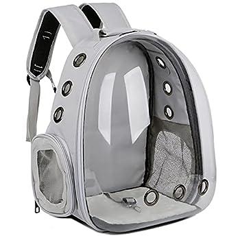 Sac à dos de transport pour oiseaux, sac à dos de voyage transparent et respirant pour l'extérieur avec perchoir