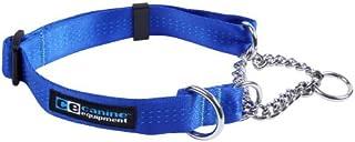 Canine Equipment Technika 1-Inch Martingale Dog Collar, X-Large, Blue