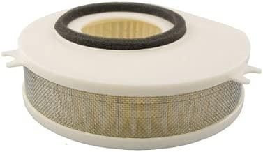 Hiflofiltro HFA4913 Premium OE Replacement Air Filter