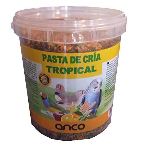 ANCO Pasta de Cria Tropical, Comida Cria Pajaros, (800 gr)