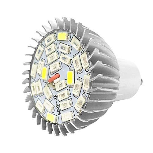 Pflanzenlampe Vollspektrum Pflanzenlicht LED Glühbirne Weitwinkel Pflanzenleuchte Sonnenähnlich Wachstumslampe für Zimmerpflanzen Garten Hydroponische Gewächshaus Pflanzen Gemüse, E14 / GU10