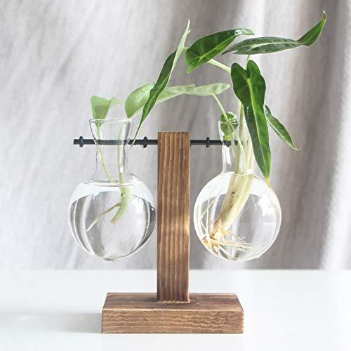 Eyourlife Wasserpflanze Glasvase Pflanzgefäß Terrarium Transparent Vase mit Holzständer Glasvase Halter Hydrokultur Holzrahmen für Coffee Shop Zimmer Dekor C (2 Bulb Vase) farblos
