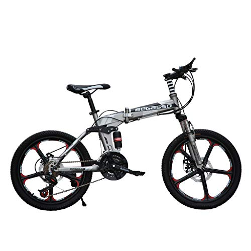 Pollyhb 20 Inch Mountain Bike, Double Disc Brake, Soft Tail Frame, Variable Speed Bicycle for Student Boys Girls, Load Capacity 200KG (Gray)