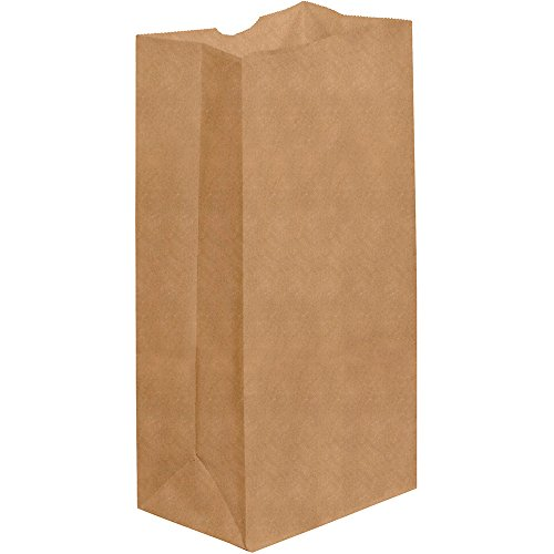New 8 1/4 x 5 1/4 x 18 #25 Grocery Bag  (BGG109K) Category: Paper Bags