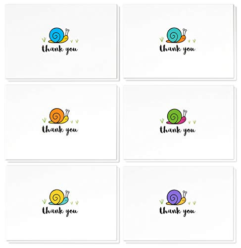 48 Assorted Pack Thank You Note Cards - Bulk Box Set - Blank on the Inside - 6 Colorful Snail Designs - Includes 48 Greeting Cards and Envelopes - 4 x 6 Inches