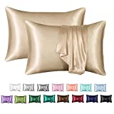 MR&HM Satin Pillowcase for Hair and Skin, Silk Satin Pillowcase 2 Pack, Queen Size Pillow Cases Set of 2, Silky Pillow Cover with Envelope Closure (20x30, Champagne)