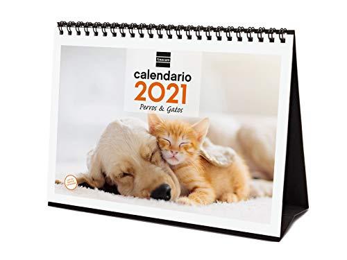 Finocam - Calendario de sobremesa 2021 Escribir Imágenes Perros y gatos Español