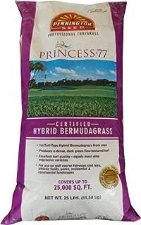 SeedRanch Princess 77 Bermuda Grass Seed - 10 Lb.