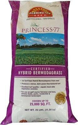 SeedRanch Princess 77 Bermuda Grass Seed - 1 Lb.