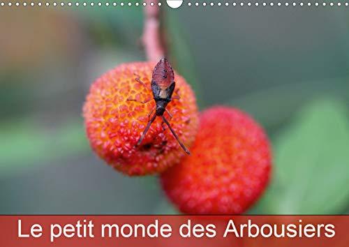 Le petit monde des Arbousiers (Calendrier mural 2021 DIN A3 horizontal): Les insectes des Arbousiers (Calendrier mensuel, 14 Pages )