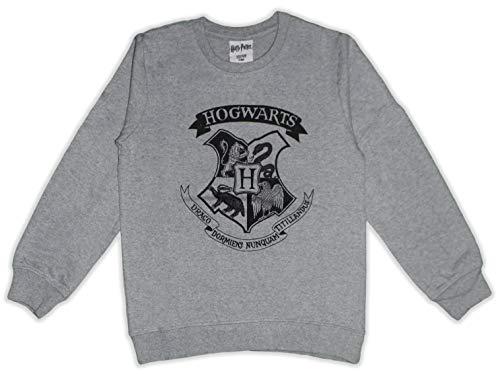 Harry Potter Sweat à manches longues Hogwarts en coton French Terry - Gris - Medium