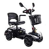 HOPELJ Silla De Ruedas Eléctrica Ciclomotor,Folding Portable Mobility Scooter - Movilidad Reducida Minusválido 270W...
