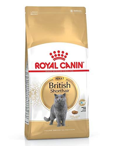 Royal Canin Katzenfutter, Britisch Kurzhaar, 10 kg