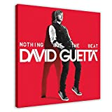 David Guetta's Albumcover – Nothing But The Beat Leinwand