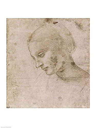 The Poster Corp Leonardo Da Vinci – Kopf einer jungen Frau oder Leiter der Virgin Kunstdruck (45,72 x 60,96 cm)
