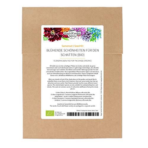 Belleza floreciente para la sombra (orgánico) – Juego de semillas con 5 plantas florales plurianuales para el jardín