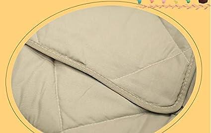 Ecloud Shop Mantas de Almohada Cuadradas de Pi/ña 2 en 1 2 Paquetes en Terciopelo Cubiertas Decorativas Suaves Juego de Cojines para Sof/á Dormitorio Coche 35x35cm