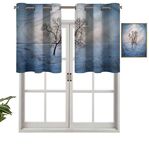 Hiiiman Cenefa recta, panel de cortina con ojales de alta calidad ICY, campo nevado frío, juego de 2, 42 x 24 pulgadas, ideal para cualquier habitación y dormitorio