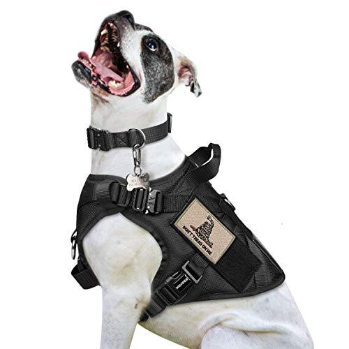 Dog Strap on