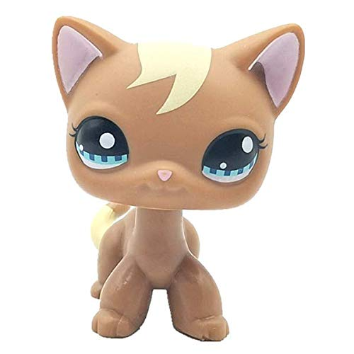 Wooer Cute Animal Pet Brown Short Hair Cat Collection Child Girl Figure Toy