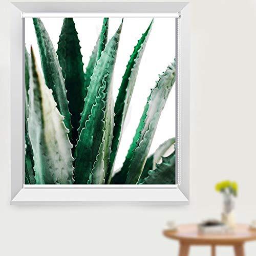 Persianas enrollables Cocina Baño Térmica Opaca Impermeable, Ventana con Diseño de Planta de Aloe, Ancho 75/95/105/115/135 cm (Size : W95×H150cm)