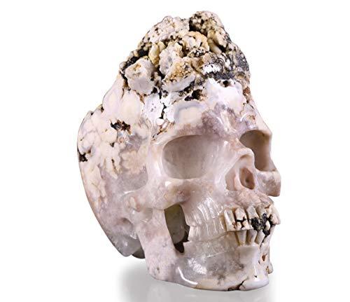 Skullis 6.4' Sakura Agate Amethyst Druse Crystal Dragon Skull, Hand Carved Gemstone Fine Art Sculpture, Reiki Healing Stone Statue.