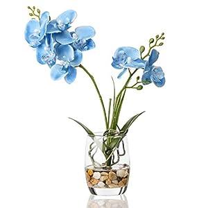 Jusdreen Artificial Flower Bonsai with Glass Vase Vivid Orchid Flower Arrangement Phalaenopsis Flowers Pot for Home Office Décor House Decorations