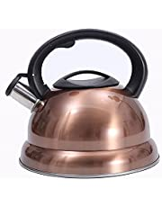Stainless Steel Whistling Kettle,Copper Coffee Teapot for Stove Top,Quick Boil Hot Water Kettle With Anti-Hot Handle