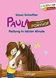 Paula auf dem Ponyhof: Rettung in letzter Minute - Ursel Scheffler