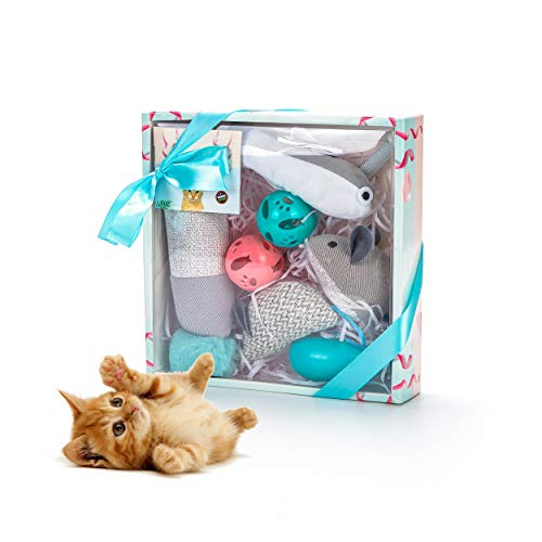 Vealind Cat Toys Set Interactive Collection Toy in Gift Box Grey