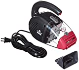pet hair vacuum cleaner by bissell