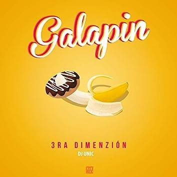 Galapin