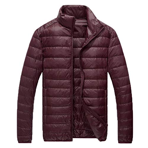 Men's Down Ski Jacket ,Stand Collar Thicken Quilted Padded Down Alternative Puffer Coat