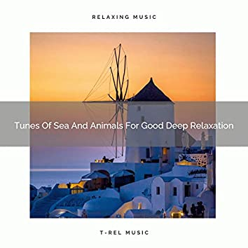 Tunes Of Sea And Animals For Good Deep Relaxation