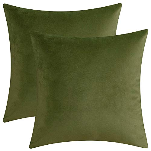 Artcest Set of 2 Decorative Velvet Throw Pillow Cases, Soft Solid Cushion Covers for Sofa Couch and Bed, 14' x14, Sage Green