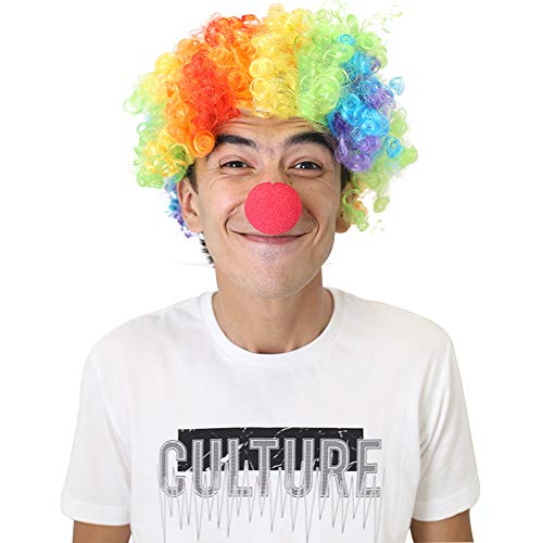 LOVEINUSA Rainbow Clown Wig Set,Fluffy Afro Synthetic Clown Wig for Men Women Cosplay Anime Party Fancy Funny Wigs