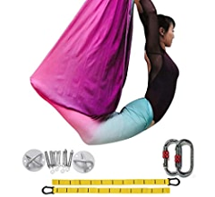 DASKING Deluxe 5m//Set Yoga Swing Aerial Yoga Hammock kit with Daisy Chains Carabiners Fabric /& Guide