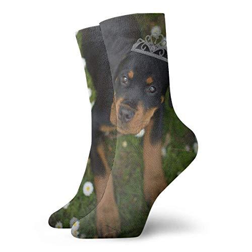 Rottweiler Lawnpuppy Calcetines cortos para adultos Algodón Fresco Clásico Ocio Deporte Calcetines cortos Adecuado para hombres Mujeres Calcetines deportivos Calcetines cómodos transpirables Casuales