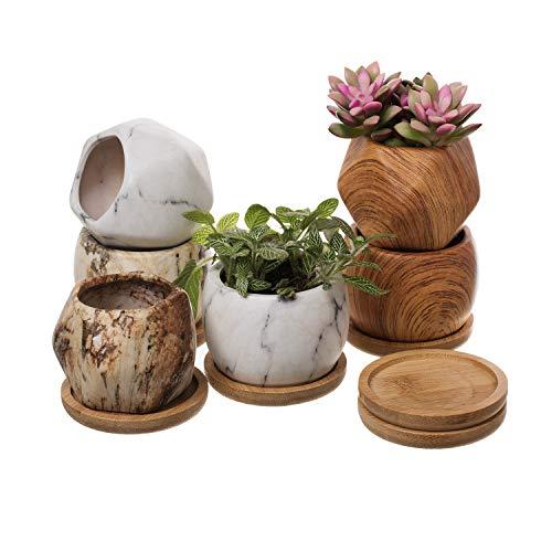 T4U 7.5CM Pot de Succulent Cactus en Céramique avex Plateau en Bamboo - Lot de 6, Petit Pot Conteneur Jardinnière pour Fleur Plante Herbe Cadeau pour Mariage Noel Anniversaire